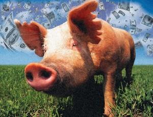 Pork spending