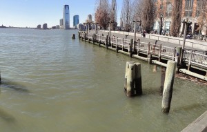 South Cove
