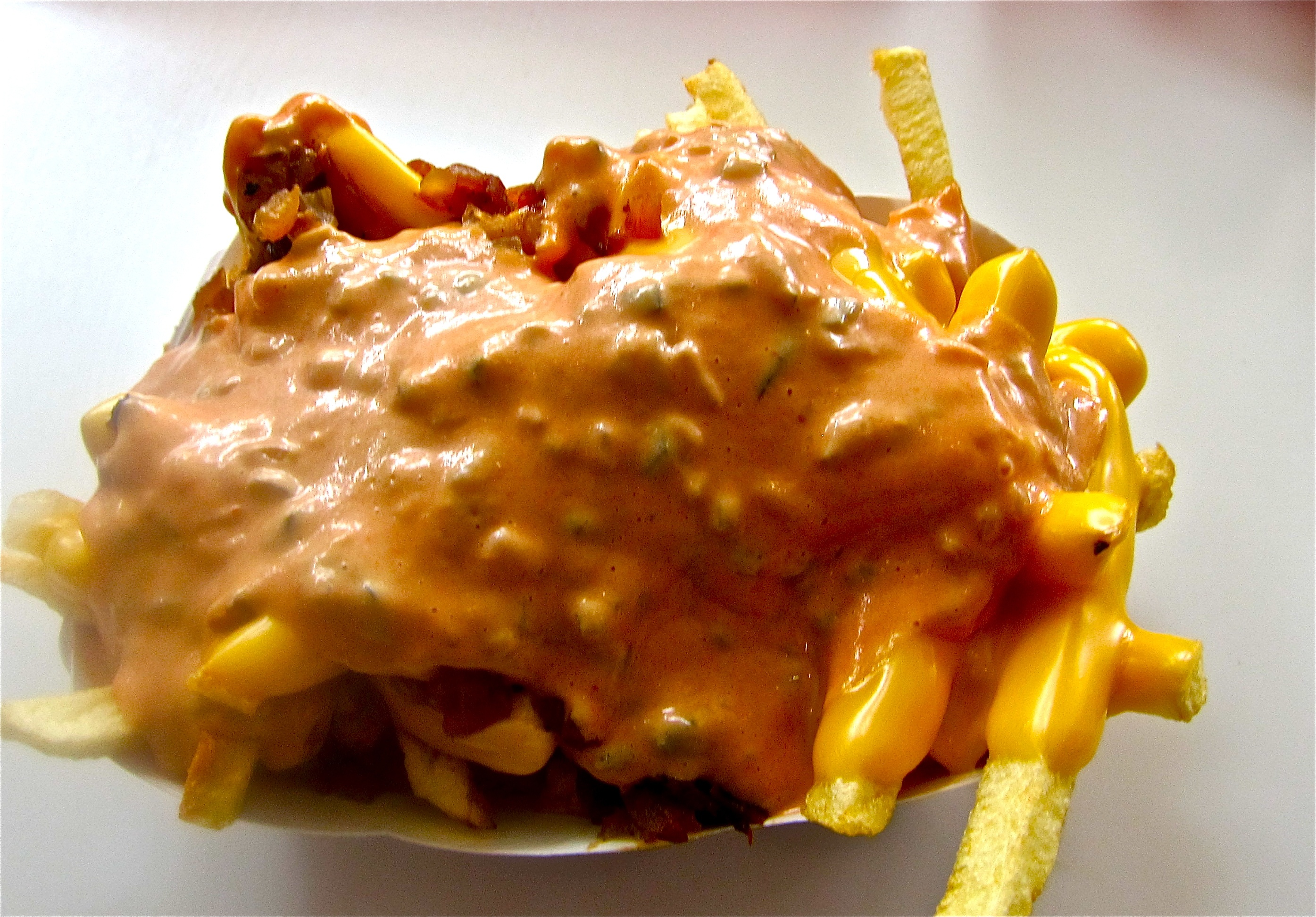 In-N-Out Animal-style Fries   BatteryPark TV We Inform