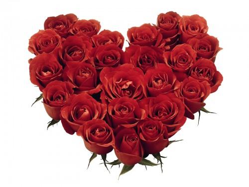 hearts roses