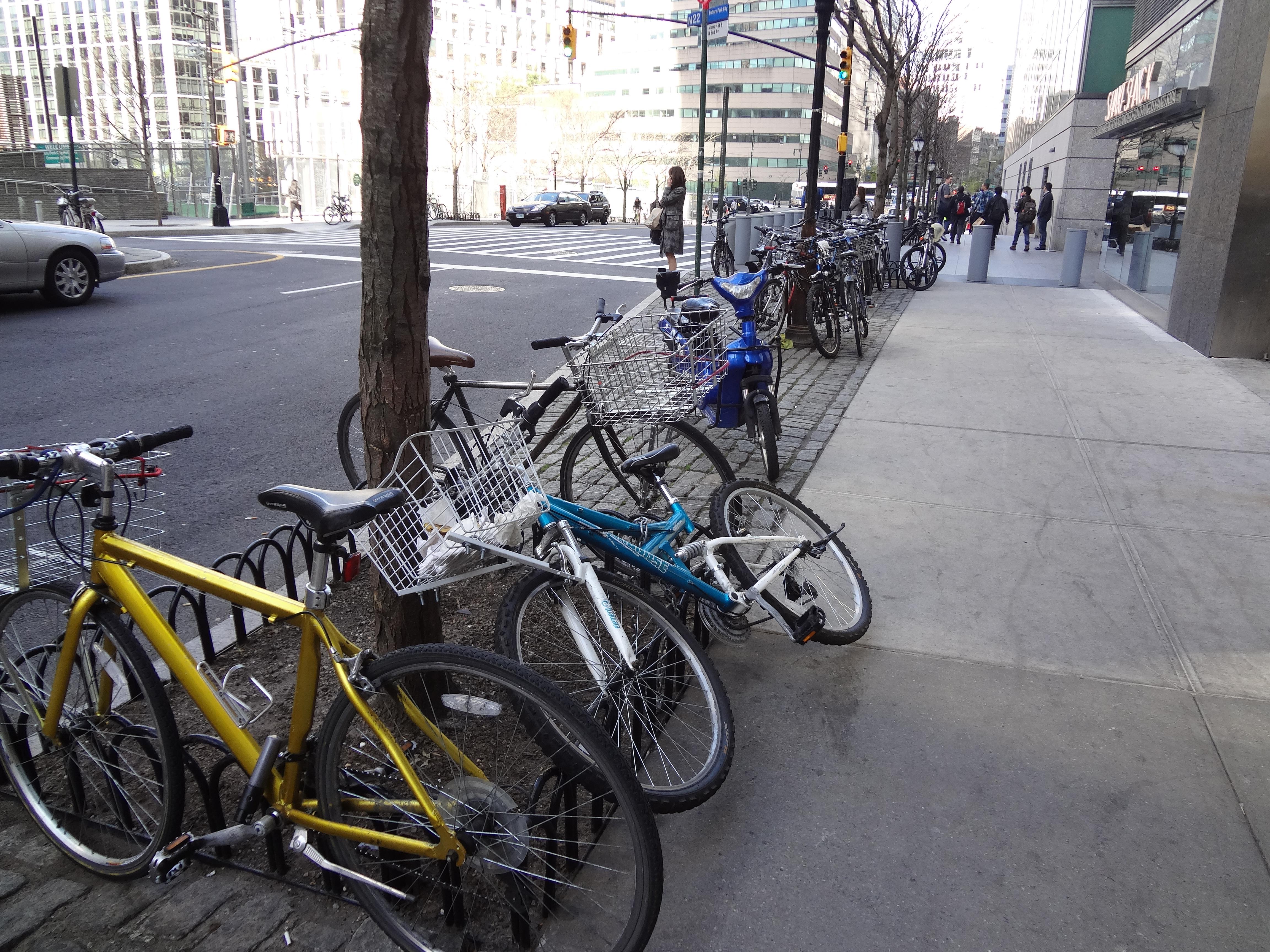 Bikes by Shae Shack 2