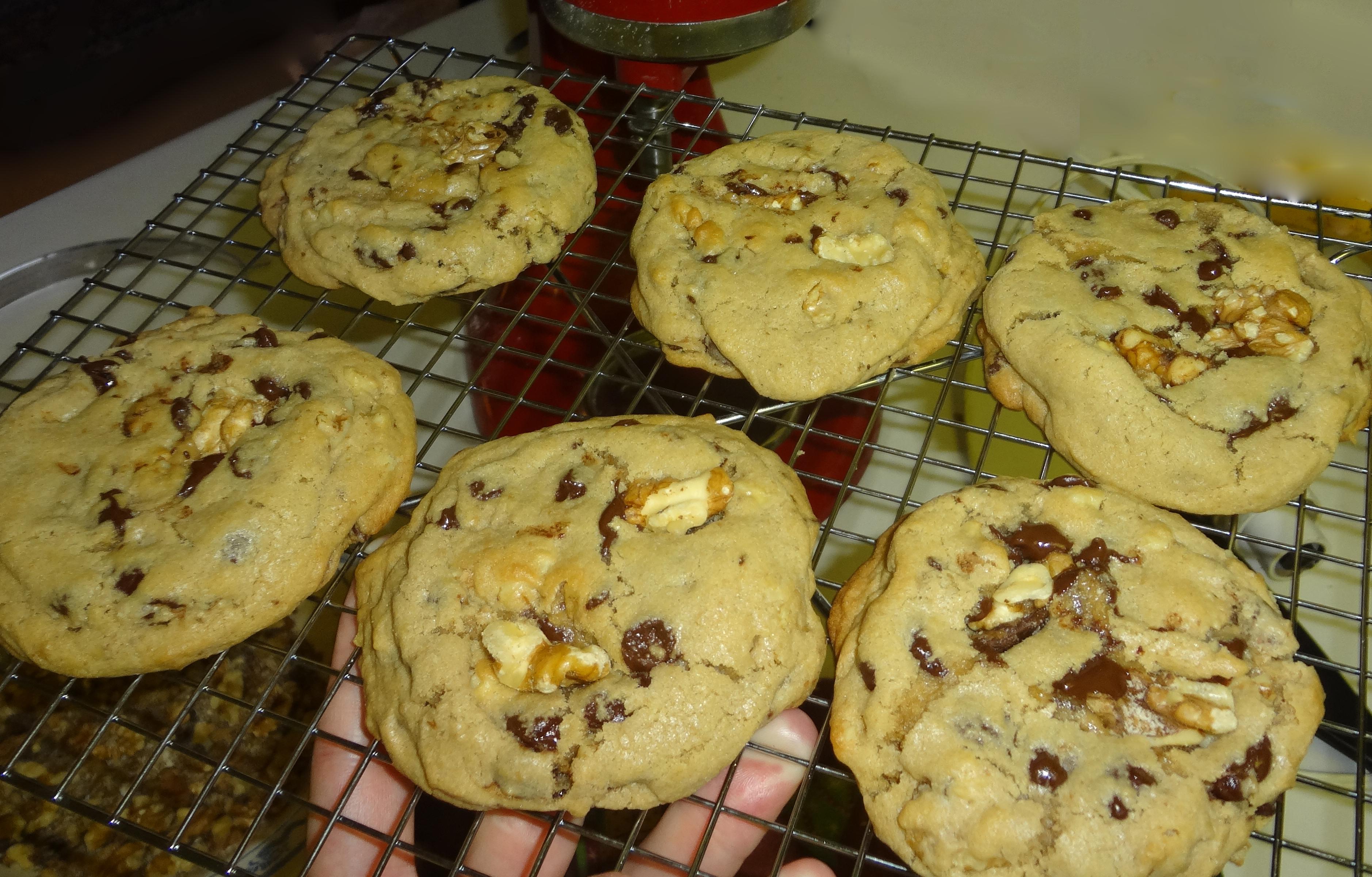 Chocolate chip walnuts 4-7-2013
