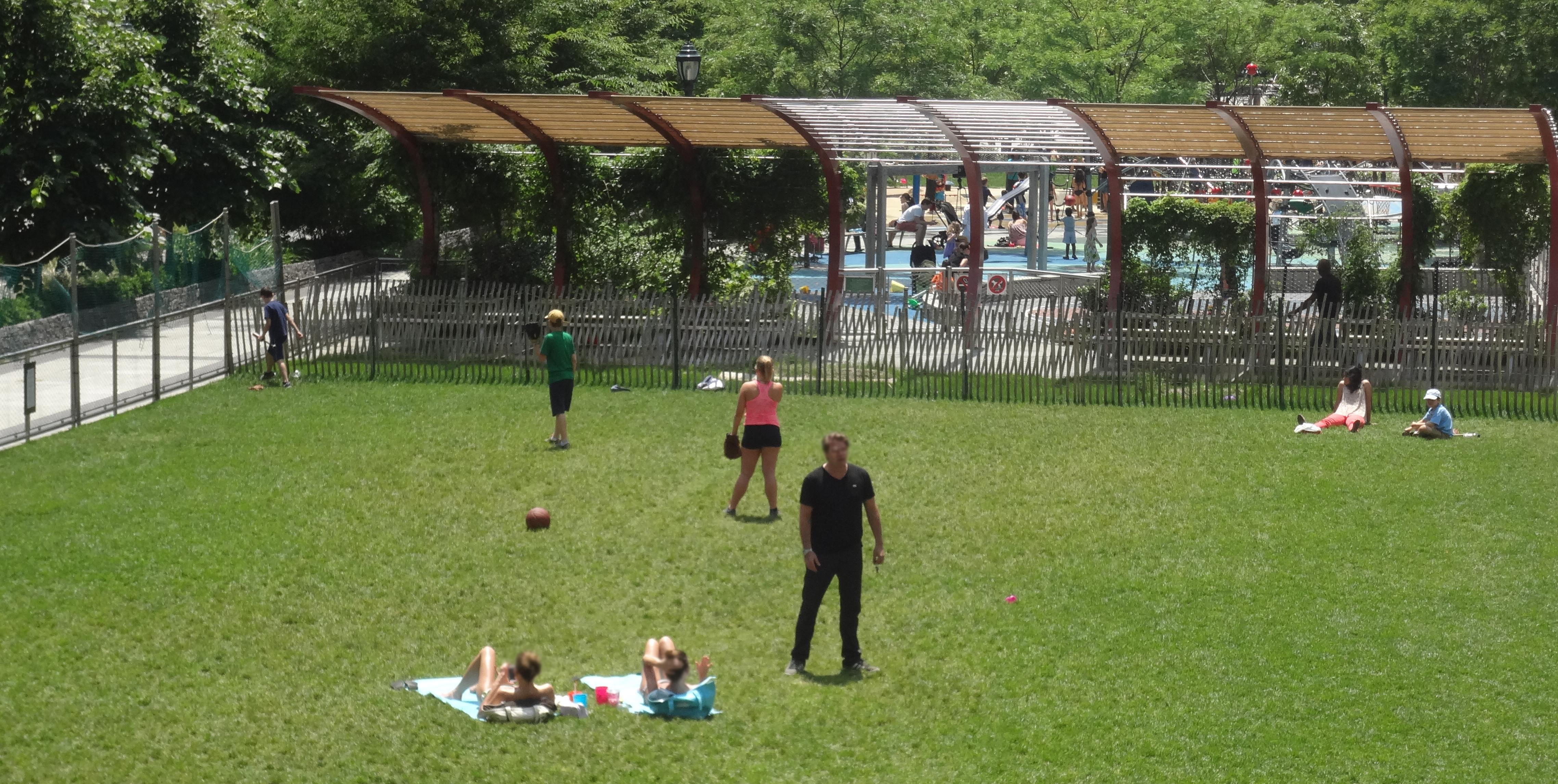 Sunbathers 6-9-2013