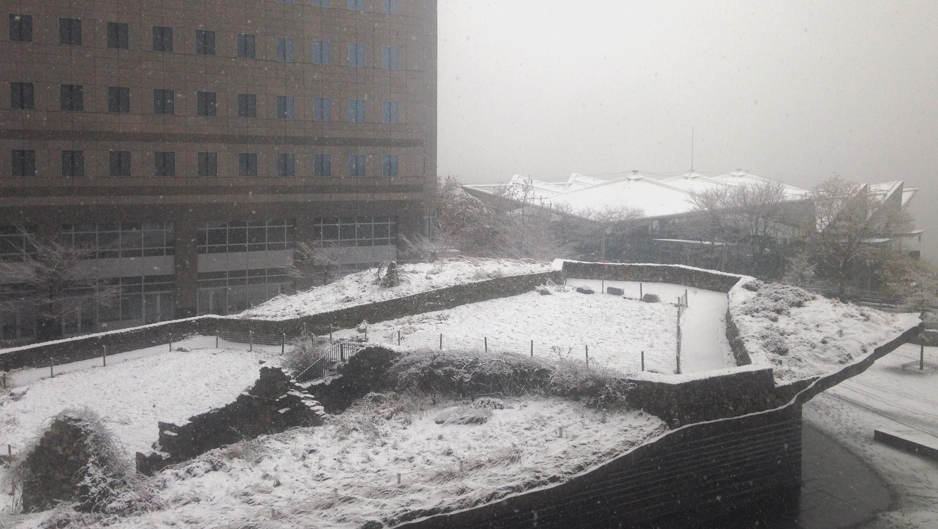 Irish Memorial snow 12-10-2013