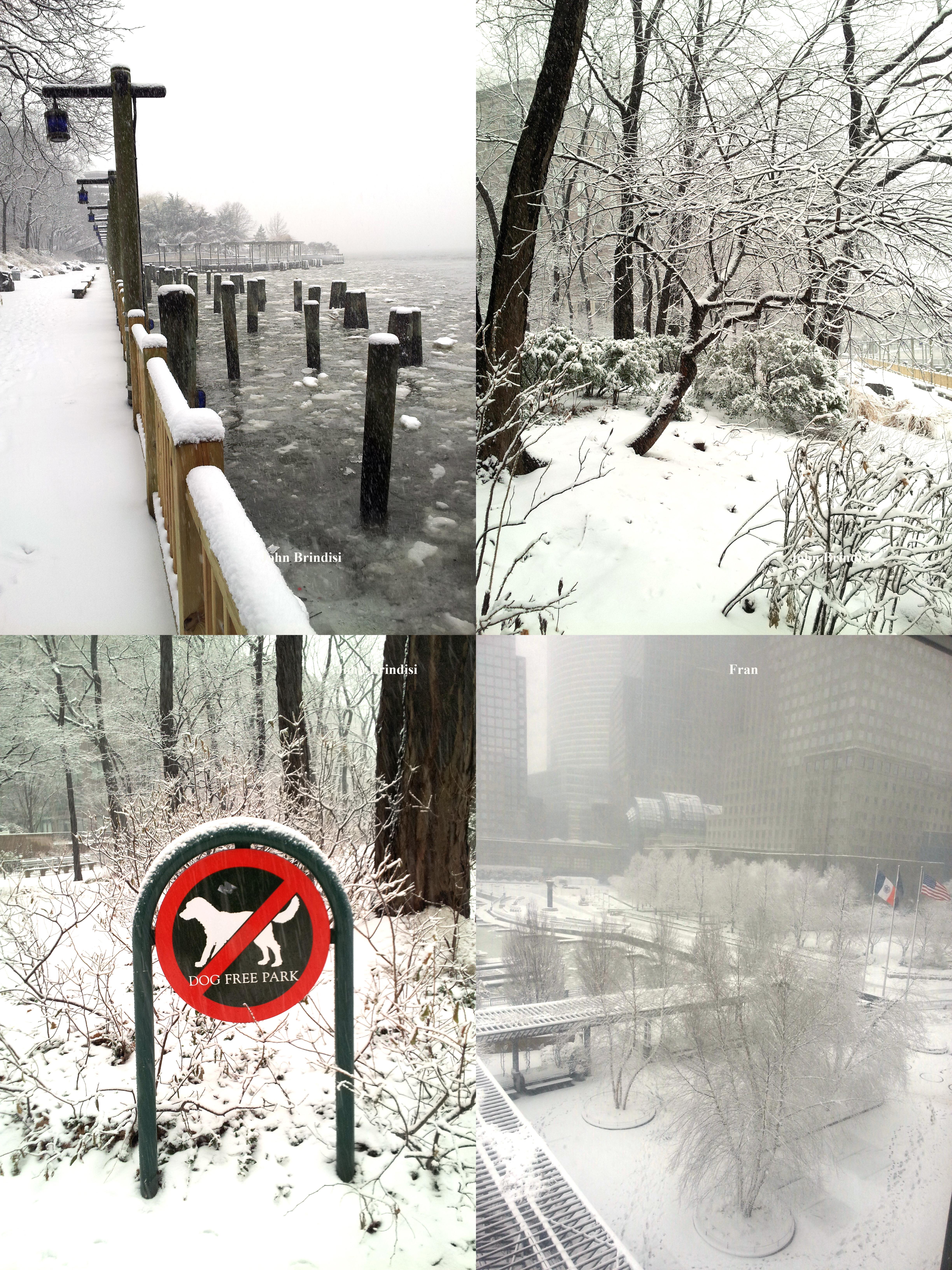 Snow photos 2-3-2014