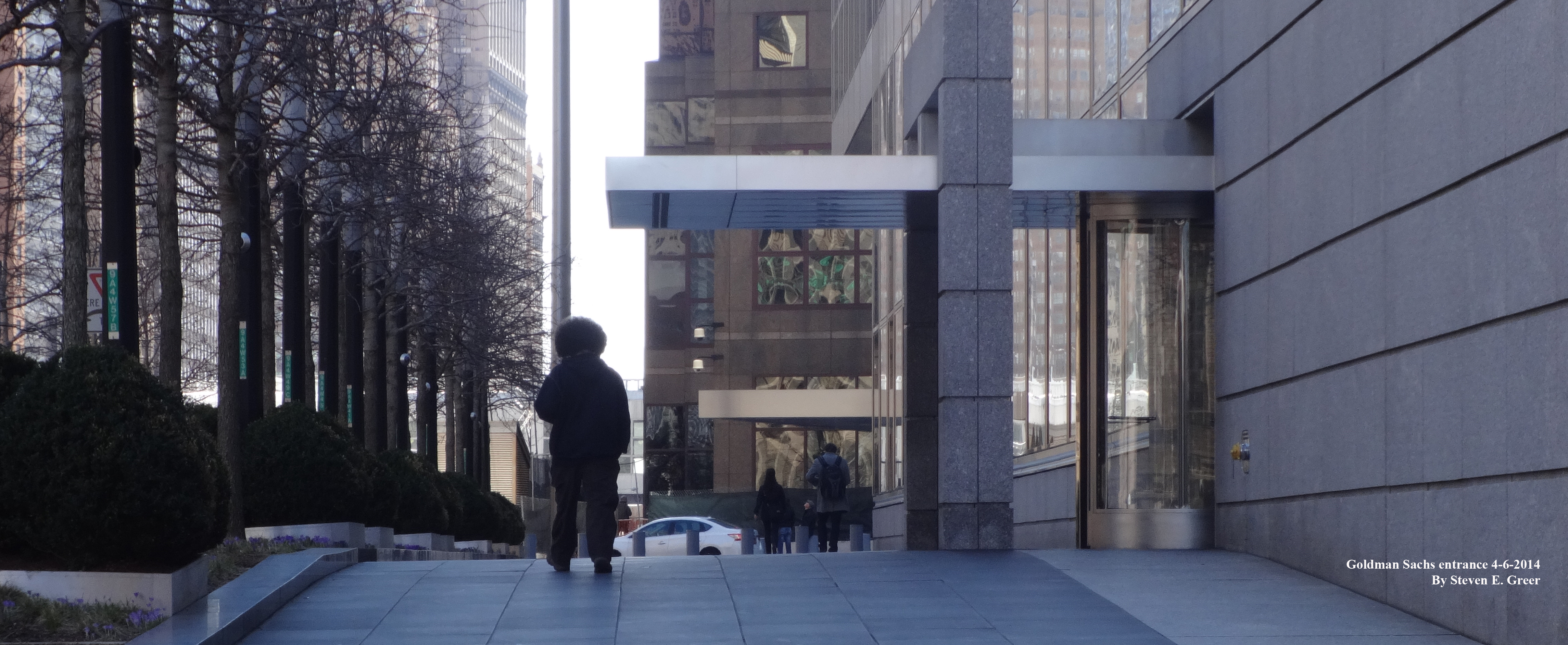 Goldman Sachs entrance with Afro