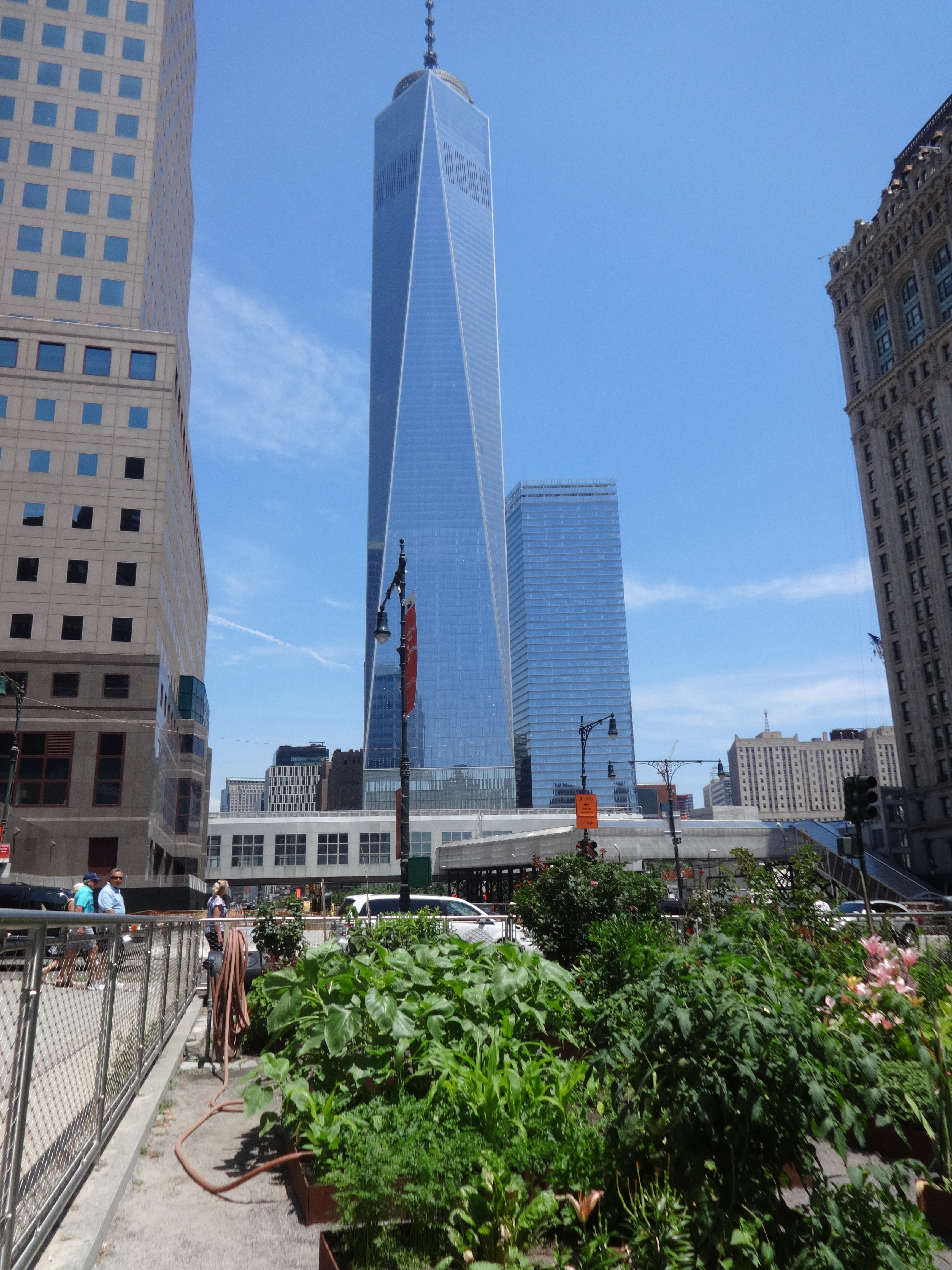 Garden and Freedom Tower 6-29-2014
