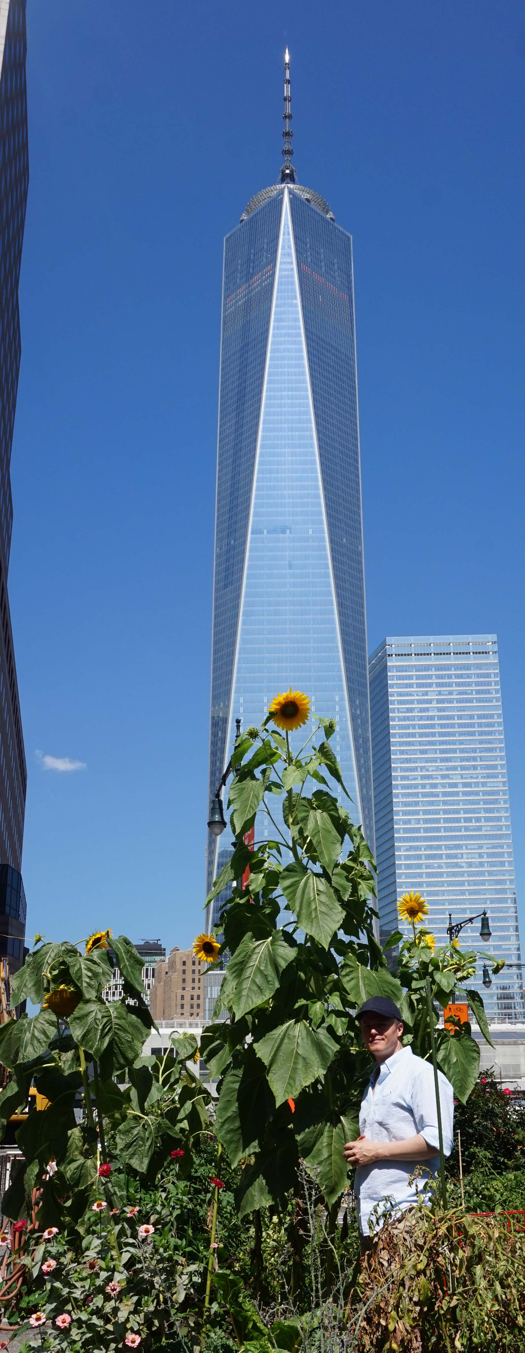 Me by sunflower Freedom Tower full 8-25-2014 low