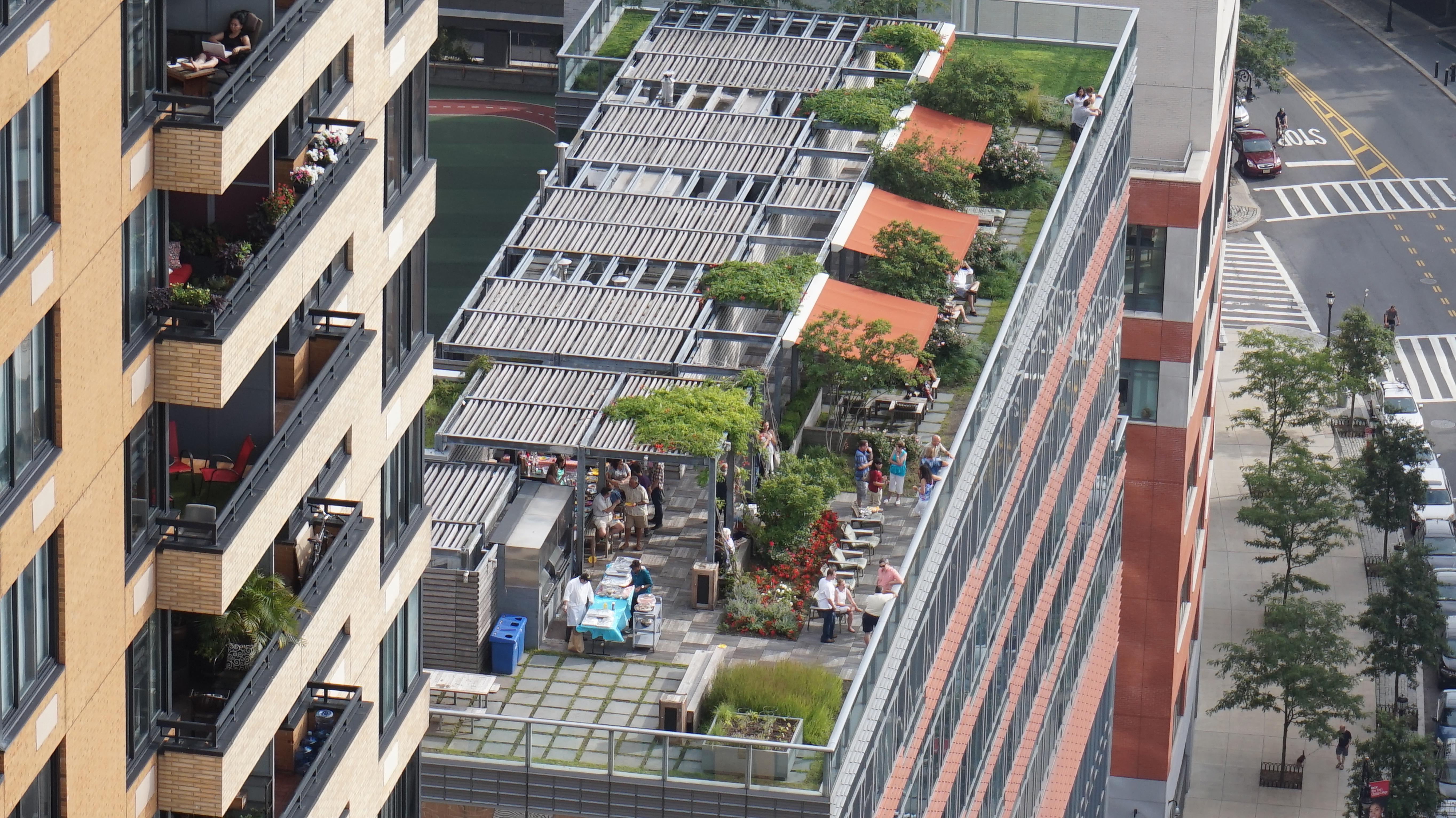 Millennium Garden Roof 8-2-2014