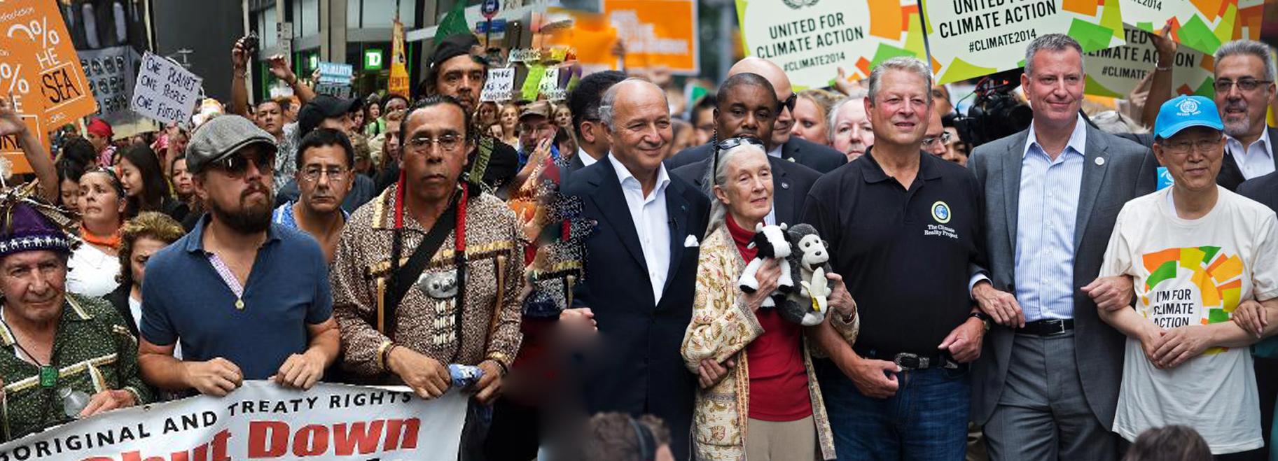 Climate change marchers