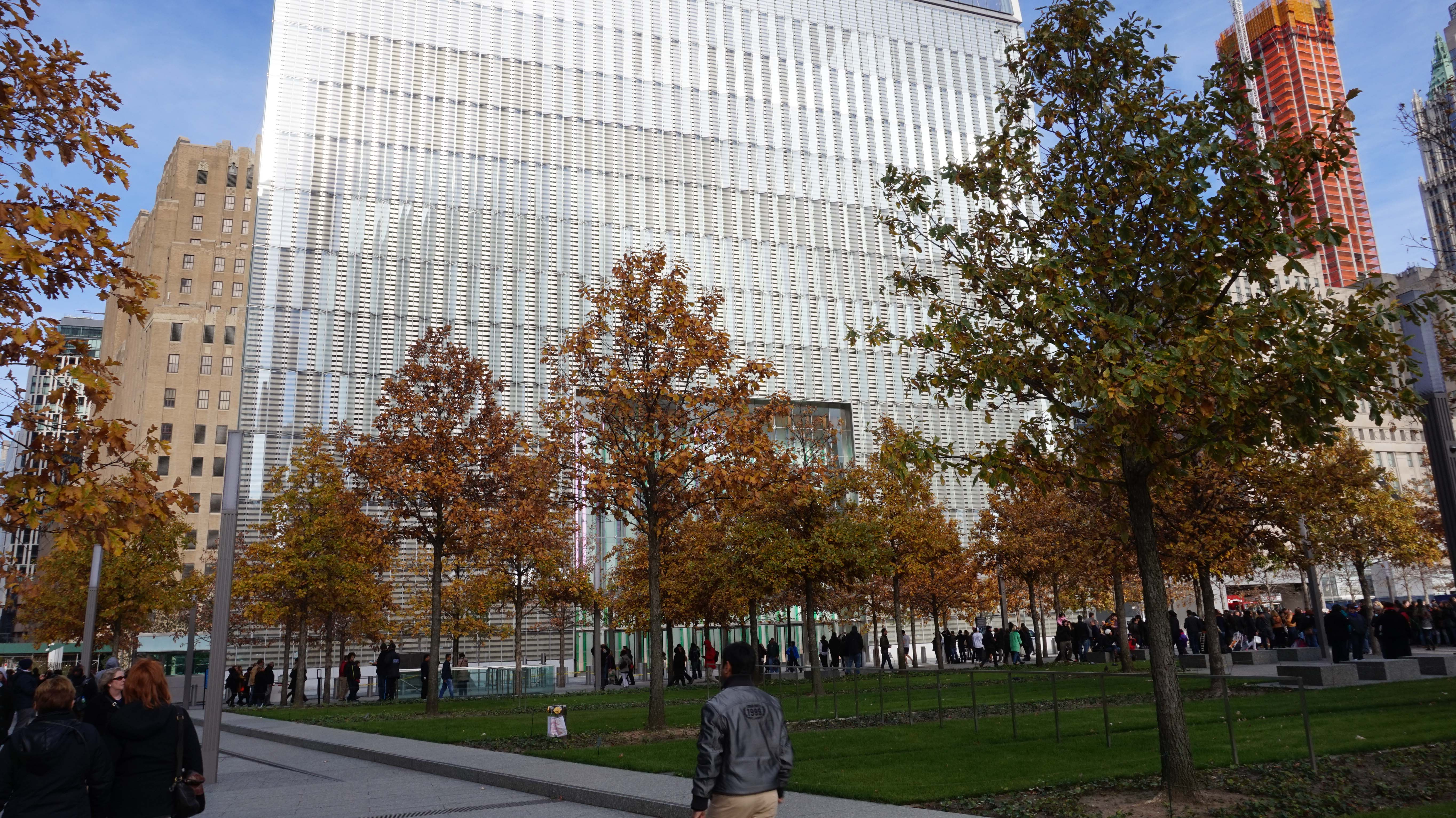 One World Trade Center through oak trees