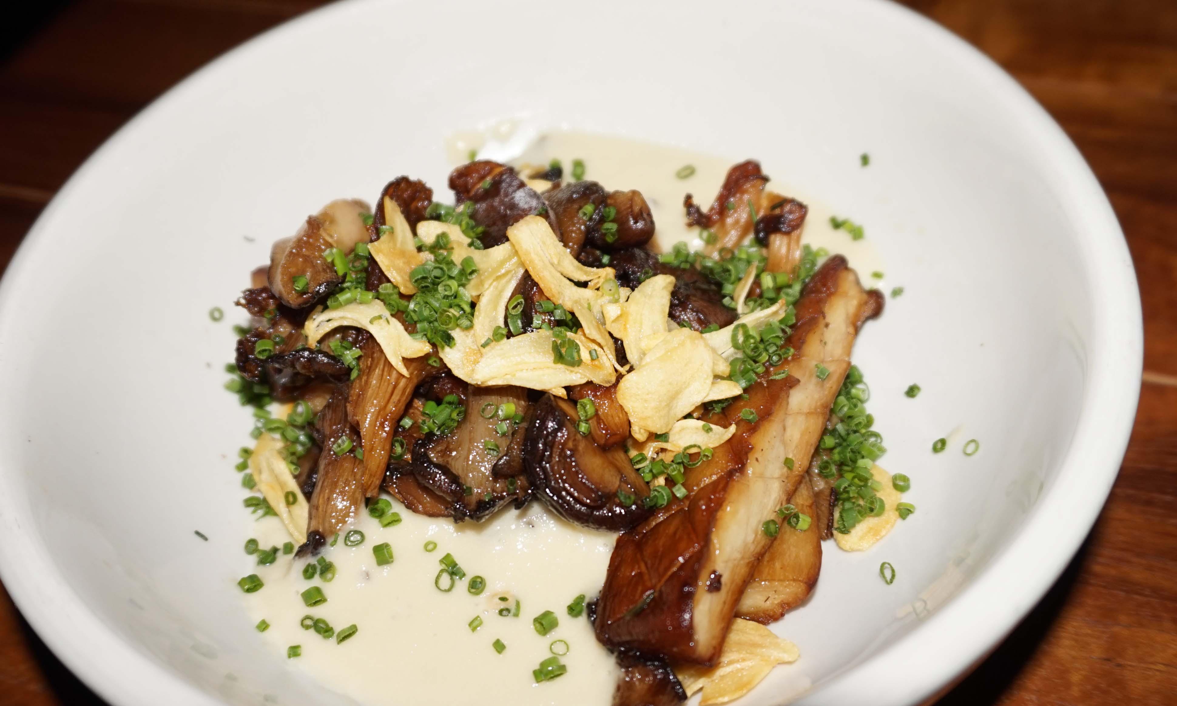 Mushrooms Distilled