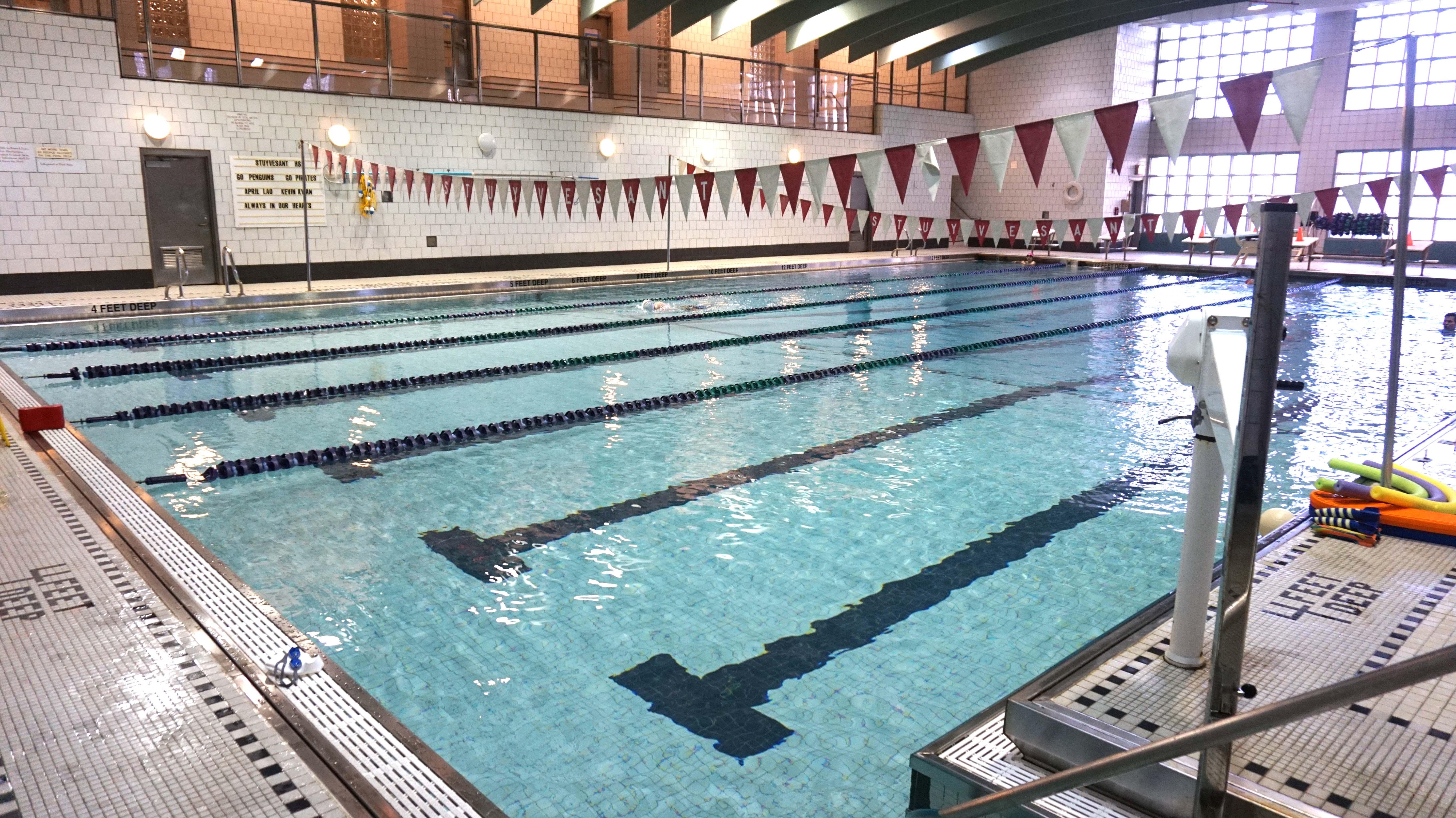 Stuyvesant pool level