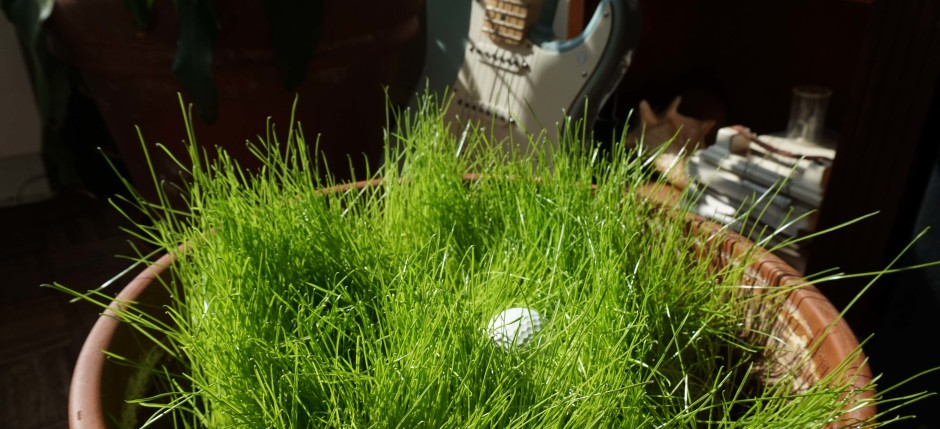 cropped-Grass-planter-with-golf-ball-low.jpg