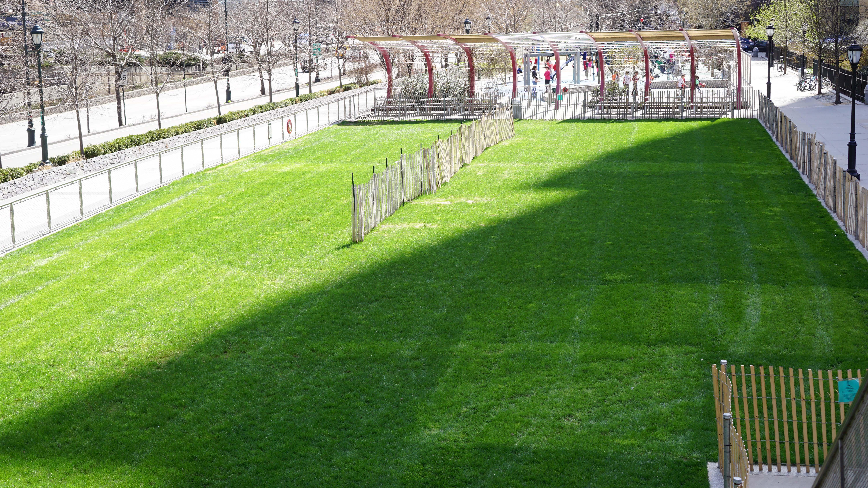 West Thames grass field 2015 April 15