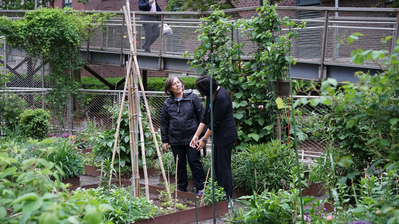 Garden Club May 18 a