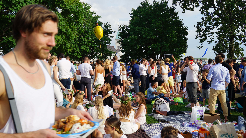 Swedish festival picnic 1