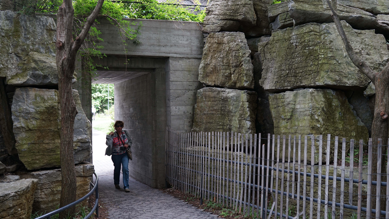 Tear Drop Park tunnel