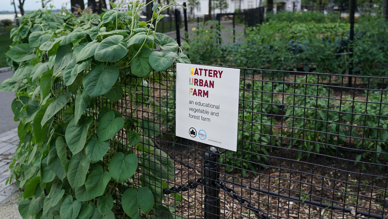 The battery garden sign