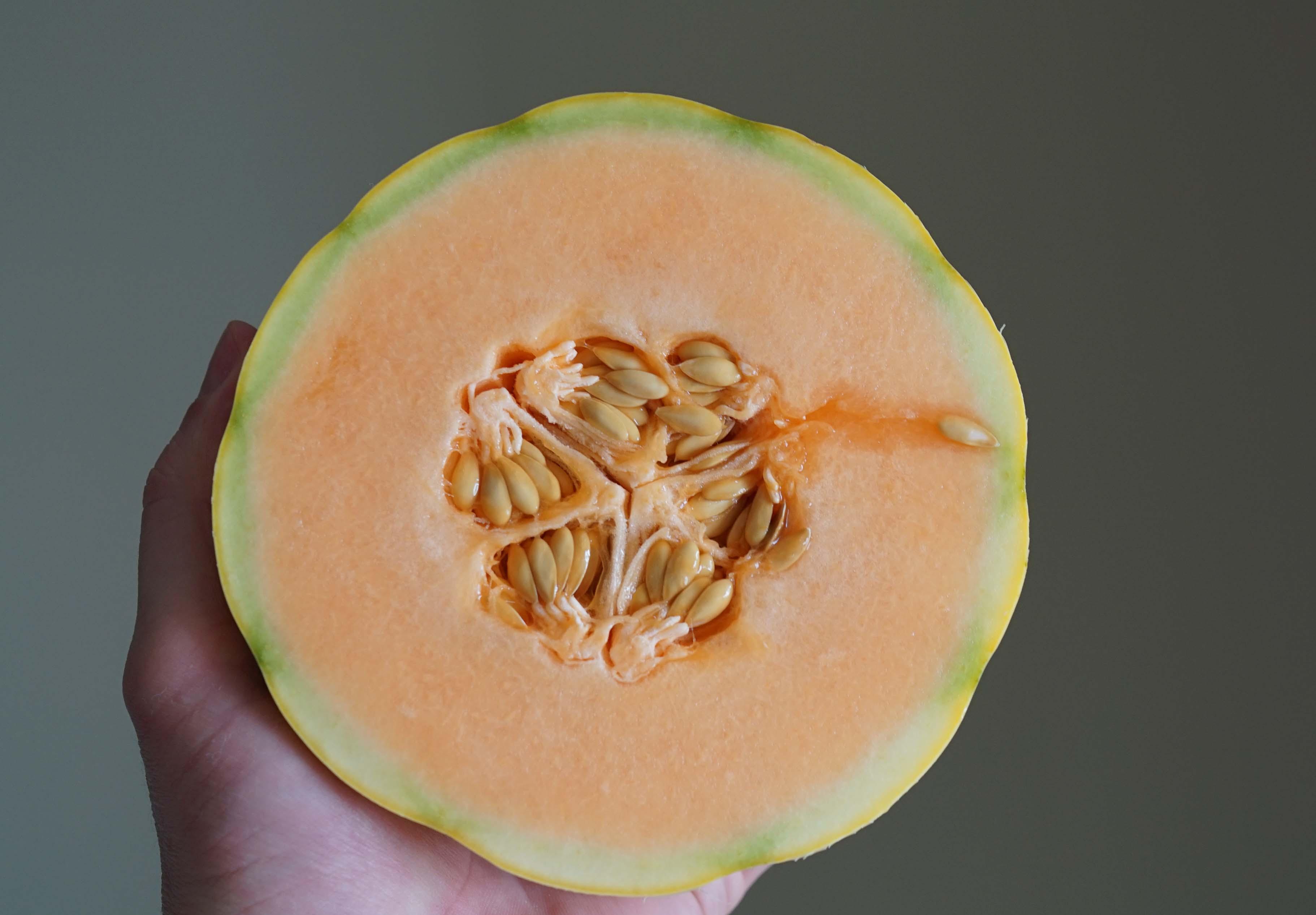 Cavaillon melon cut Le District