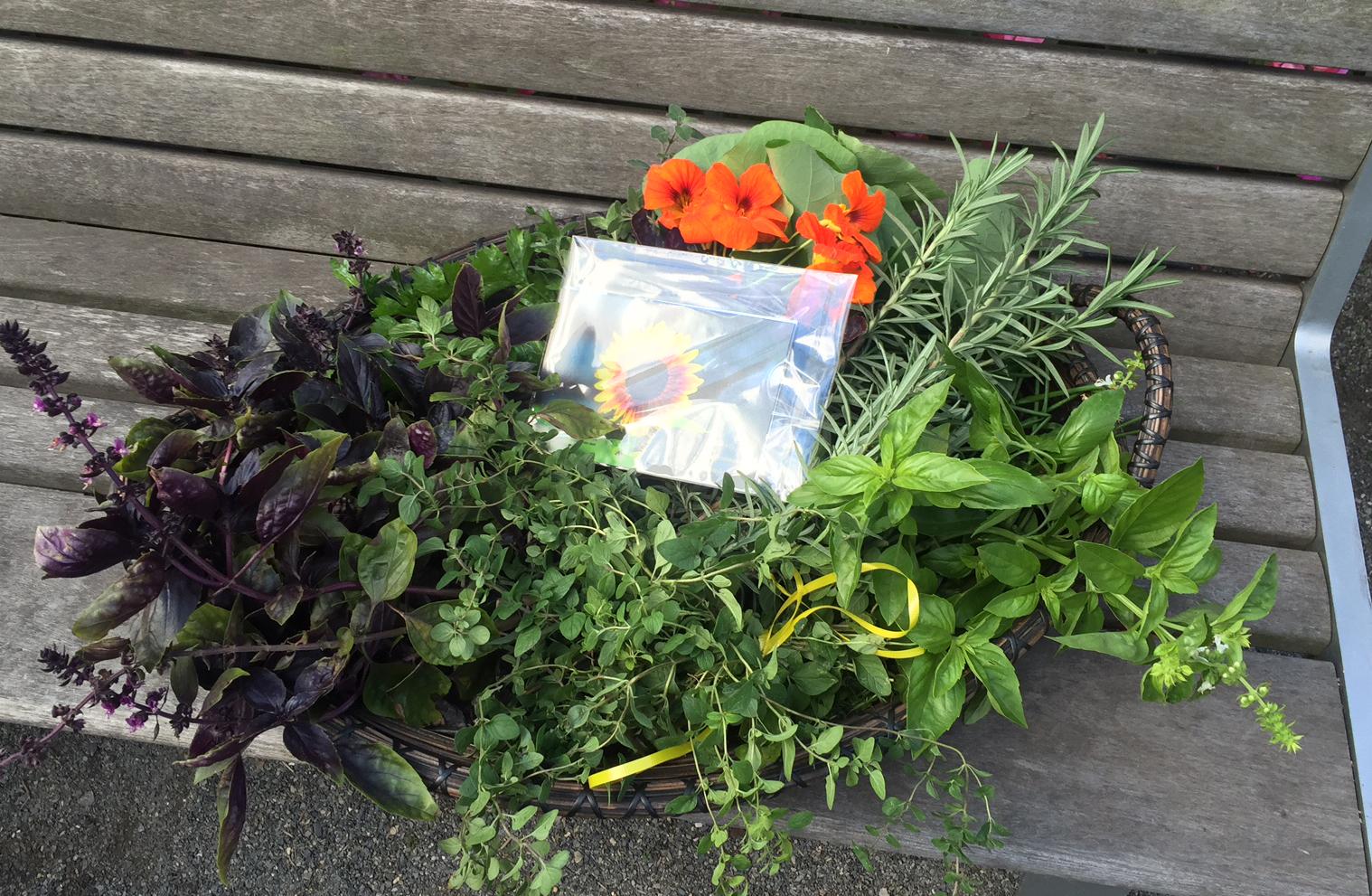 garden herbs to Le District 10-26-2015