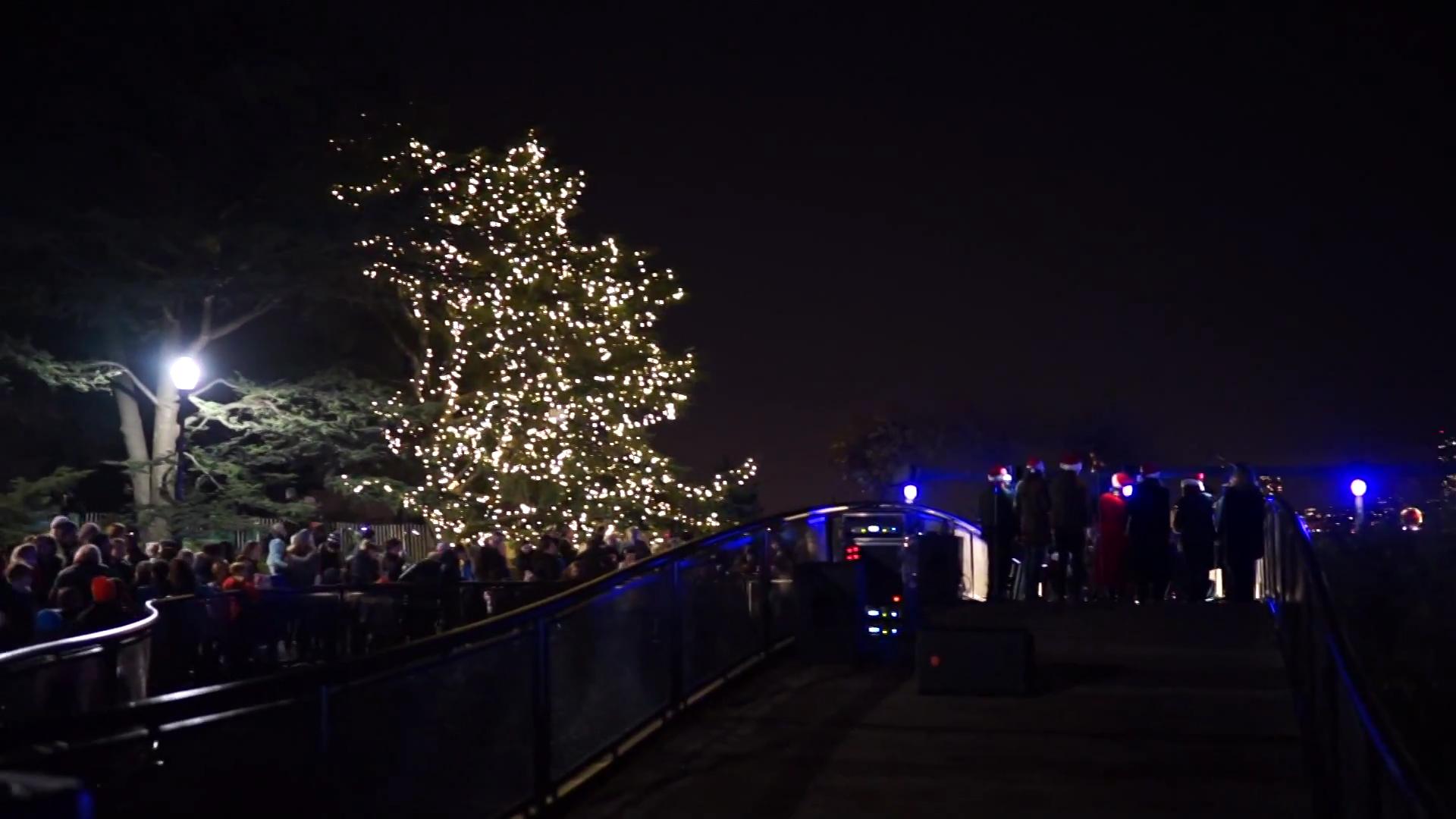 ugly Christmas tree of 2015