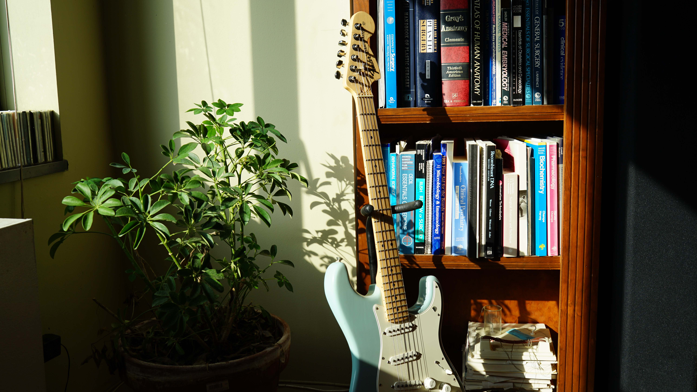 Guitar in light