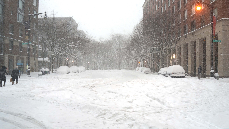Snowfall south end ave 1-23-2016