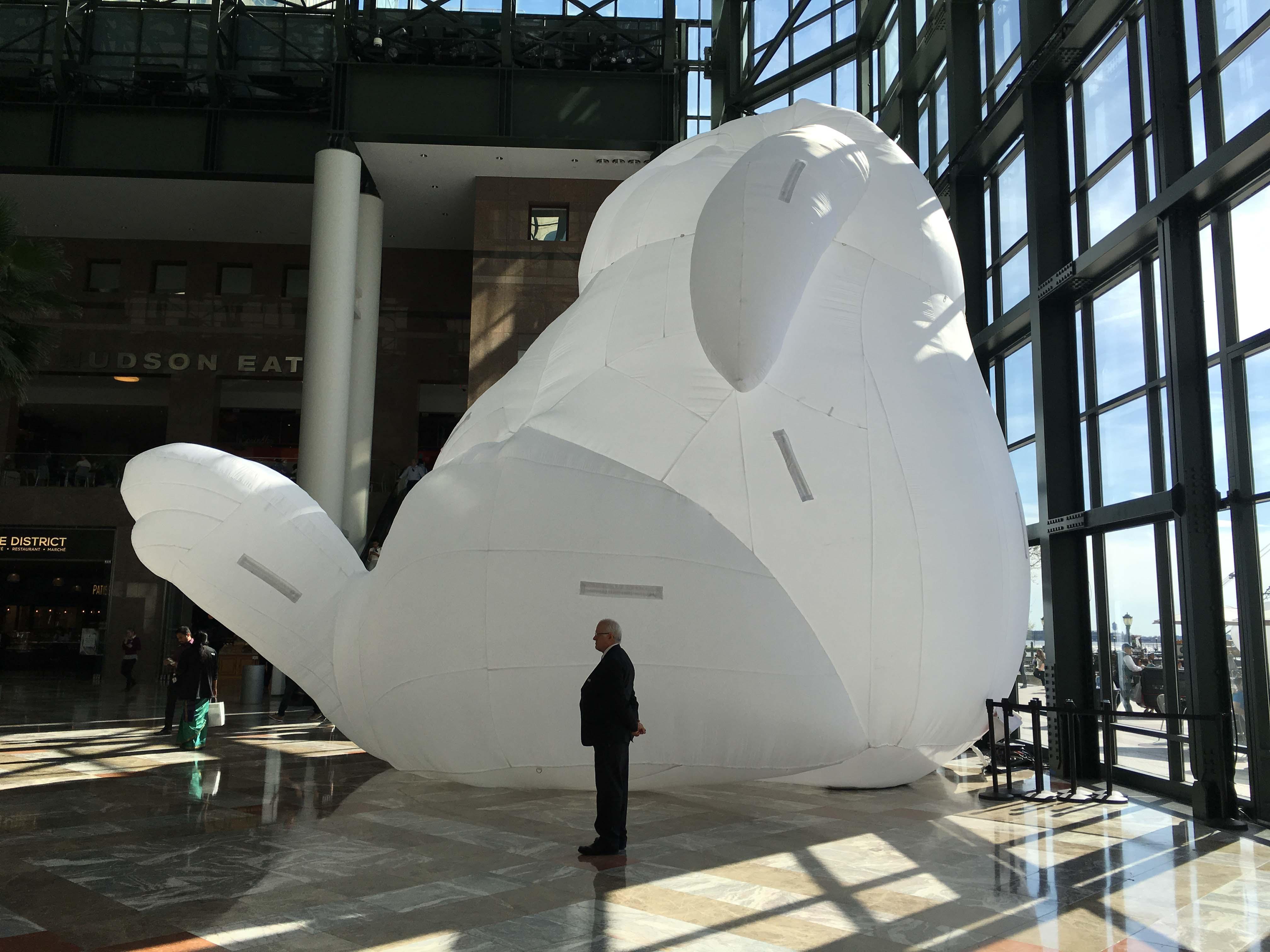 Intrusion rabbit in winter garden A