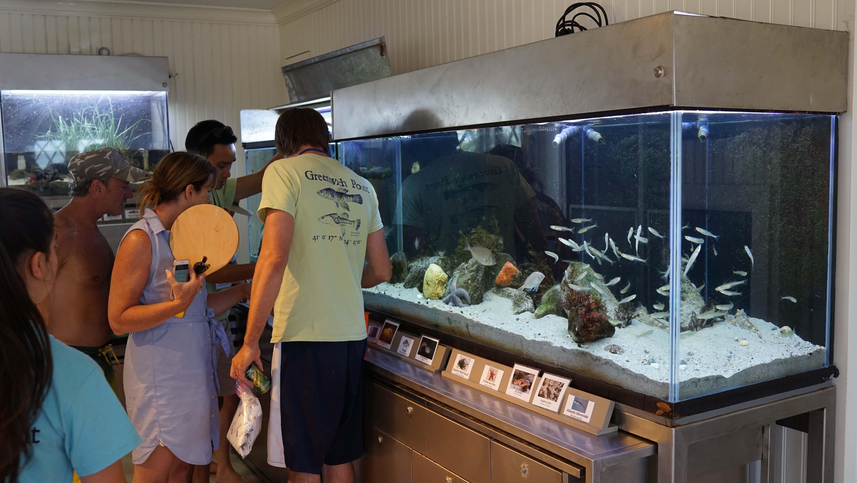 Aquarium Tods Point