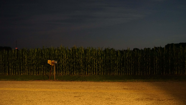 cornfield night willey rd