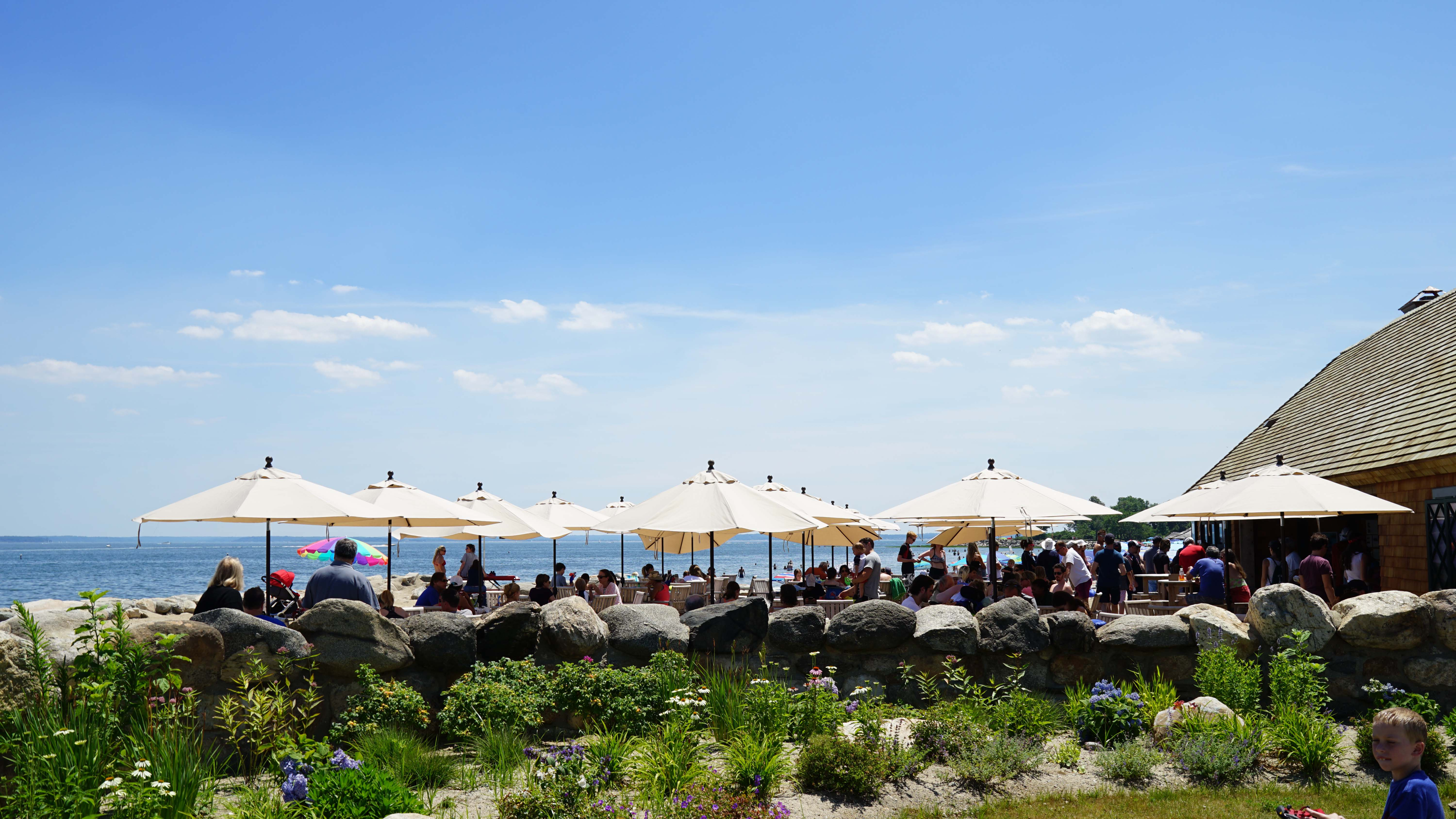 tods point brown umbrellas
