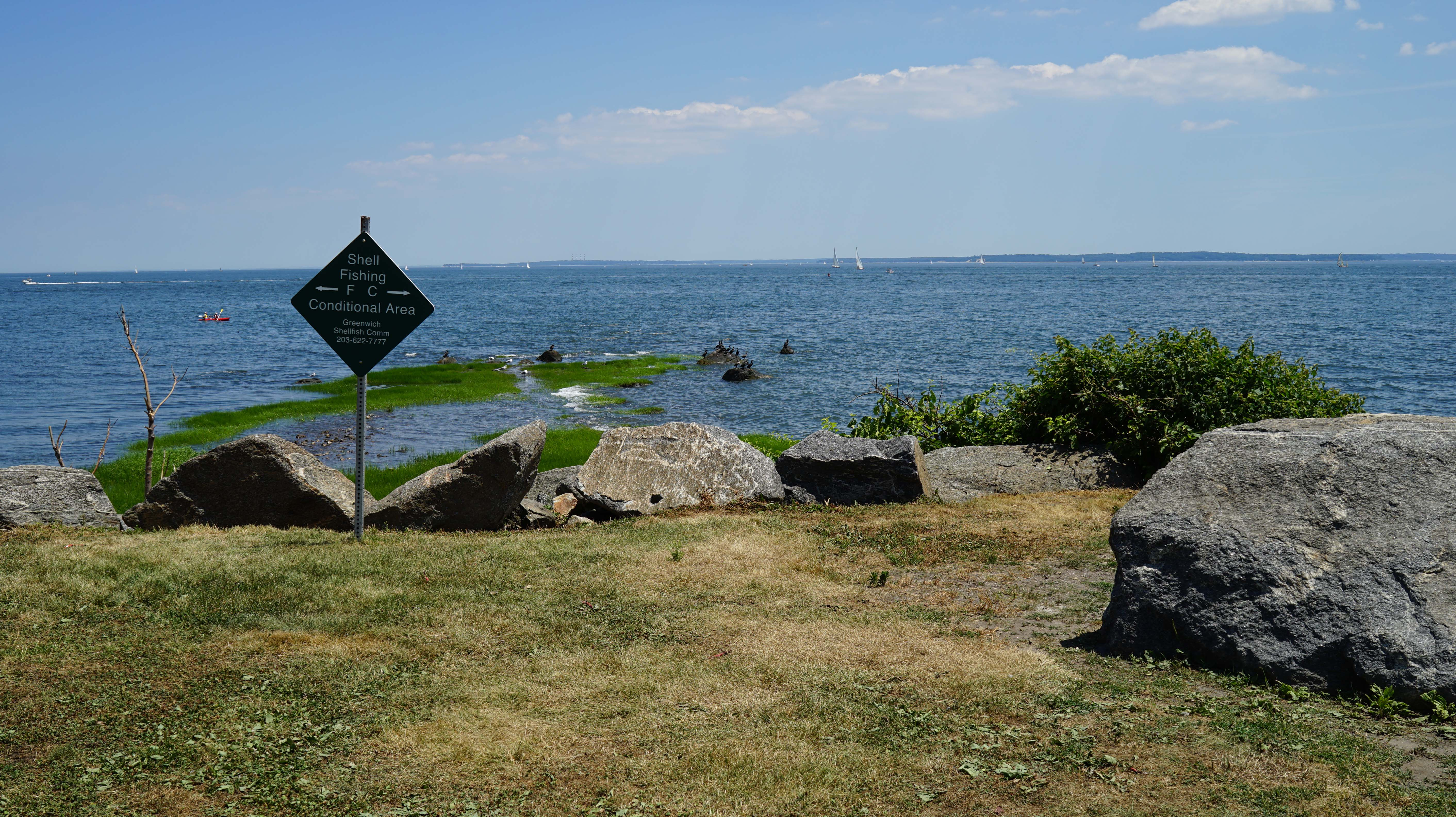 tods point long island sound shell fishing